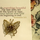 Editor's Journal Notes - The Beauty of the Butterfly