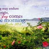Word: Joy Comes in the Morning - Psalm 30